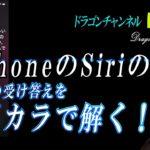 Vol.132  iphoneのShiriの謎の受け答えをバカラで解く!  #光明 #龍神 #弘法大師